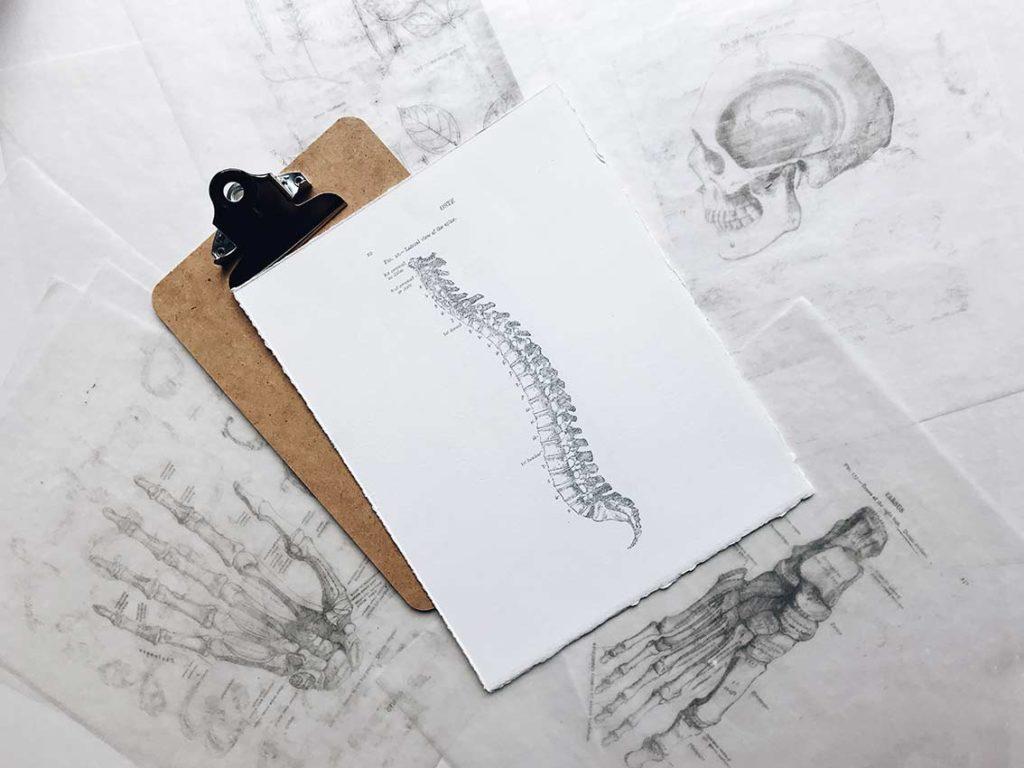 kinesiologia posturale